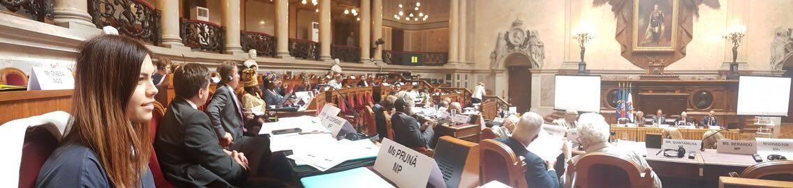 Conferința de lansare a Rețelei Parlamentare privind politicile în materie de diasporă, organizată de Adunarea Parlamentară a Consiliului Europei (APCE)